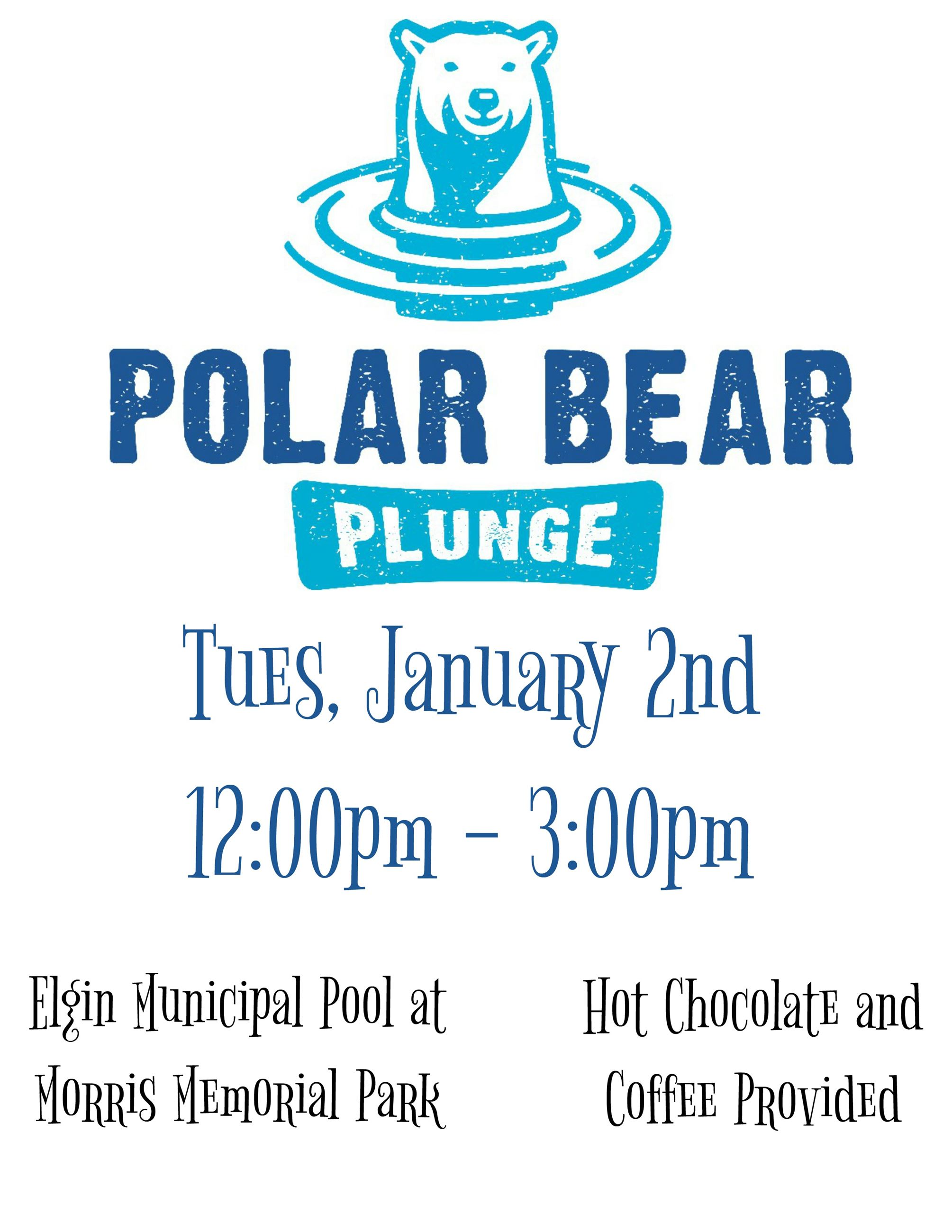 Polar Bear Plunge Flyer