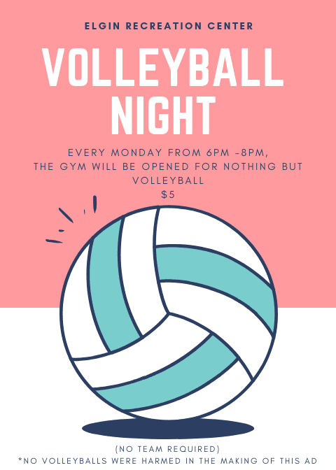 Volleyball Night
